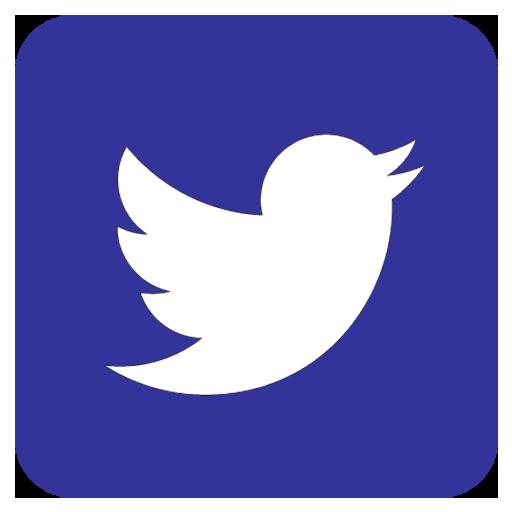logo twitter st germ'infos